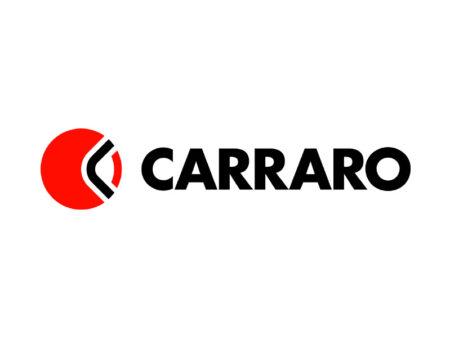 ✅Запчасти для мостов, осей и трансмиссий CARRARO